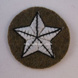 WW2 Mullet (5 Pointed Star) RTR