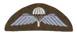 WW2 Para Wings (Semi-Circular Backing)