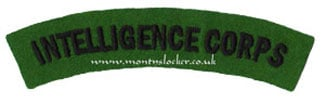 WW2 Intelligence Corps Shoulder Titles (Pair)