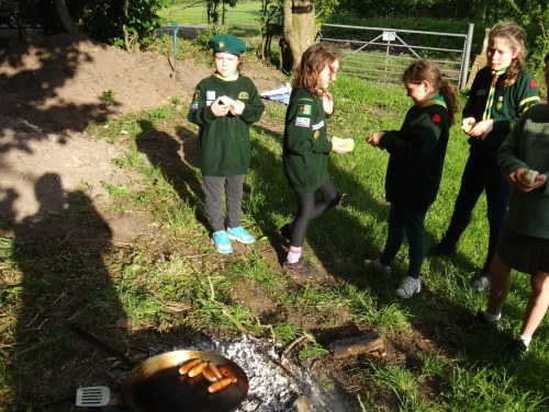238 Scout Land girl Cubs sausages