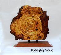 oak burr plaque (2)