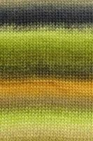 Mille Colori Baby 17 (dye lot 9356)