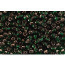 Debbie Abrahams Seed Beads - size 6/0 - 53 Holly