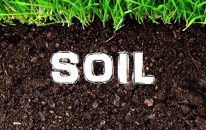 Soil  - Price from