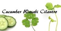 Cucumber Wasabi & Cilantro  - Price from