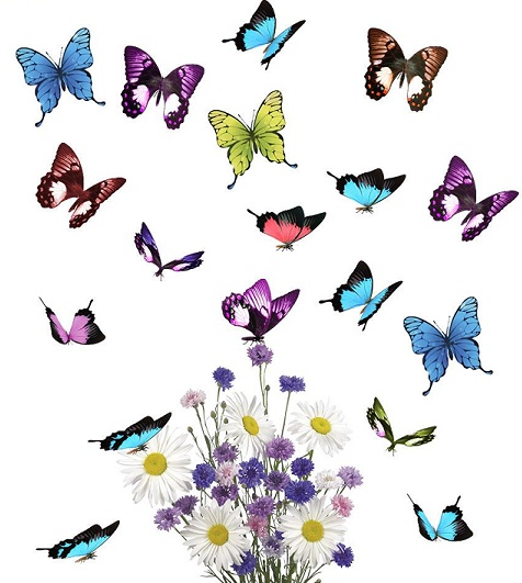 Butterfly Hugs   - Price from