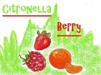 Citronella Berry   - Price from