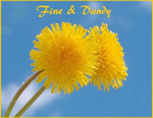 Fine & Dandy  - Price from