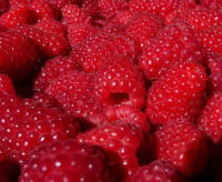 Sun Ripened Raspberry - Price from ...