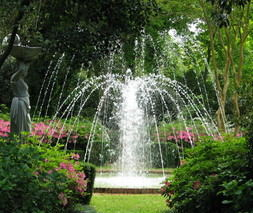 Fountain of Youth - Price from