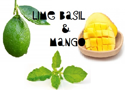 Lime Basil & Mango  - Price from