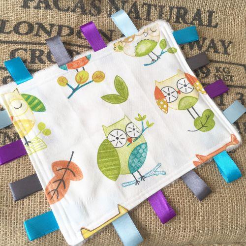 Owl baby minky  Taggy Blankets