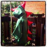 Dinosaur Hoodies Bottle Green