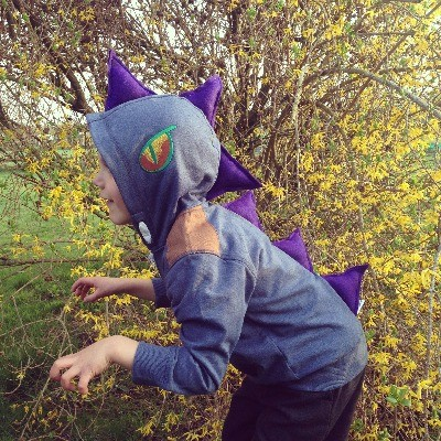 Dinosaur Hoodies ANY colour