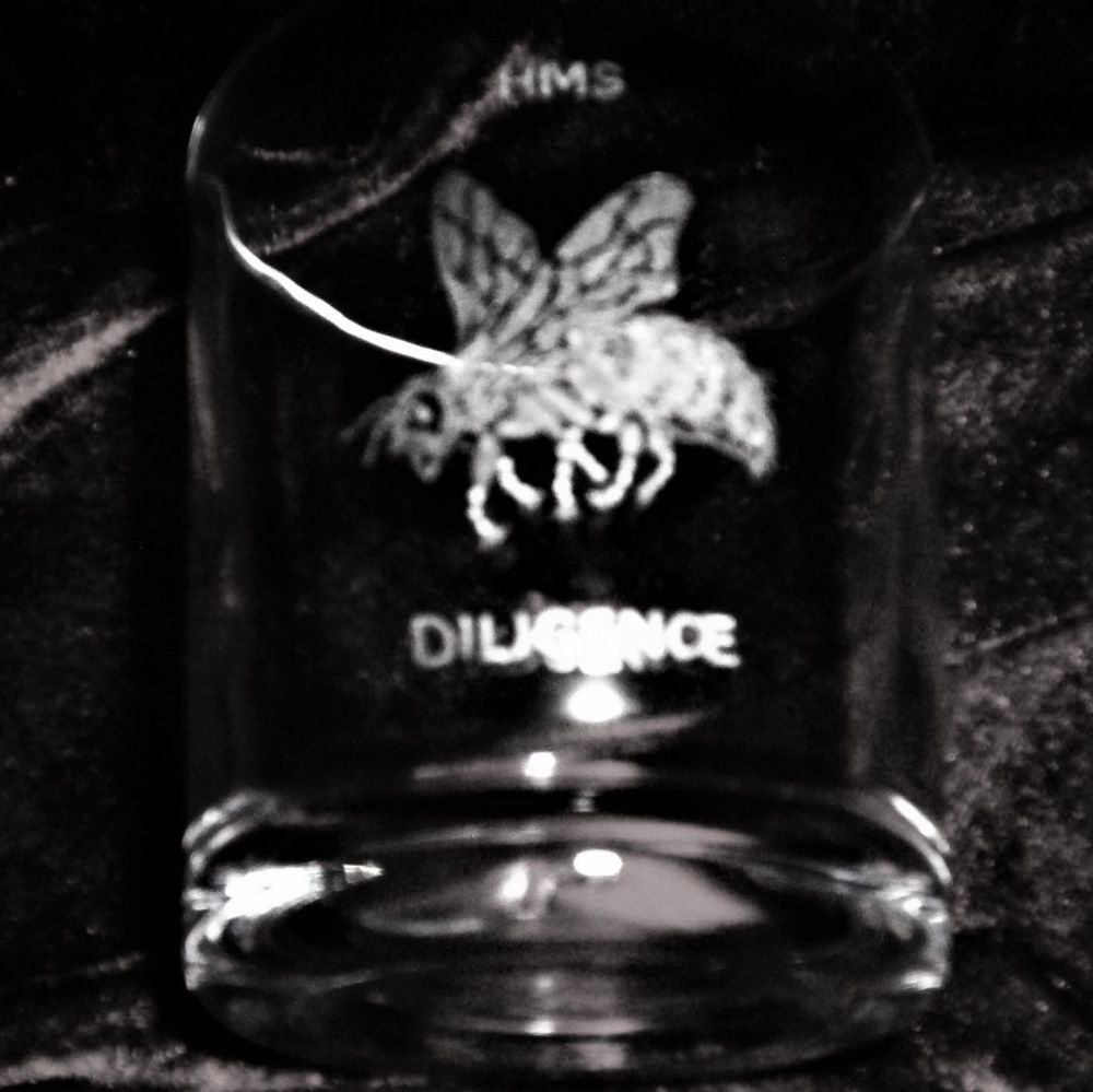 HMS Diligence