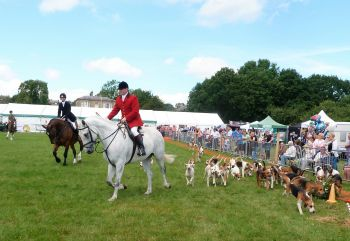 Goosnargh & Longridge Show - July 2017 (36)