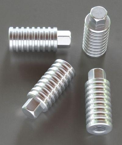 CylinderNutsSlv