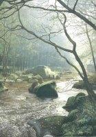 'River Esk Mist'