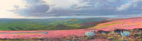 'Farndale Sheep.'