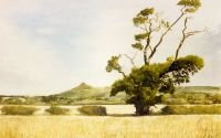 'Towards Roseberry Topping'