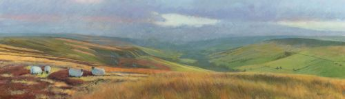 'Farndale Evening'