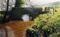 'Spring in Farndale.'