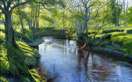 'River Esk, near Lealholm'
