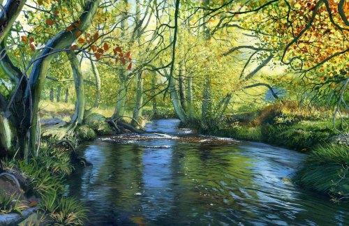 'River Esk, Westerdale'