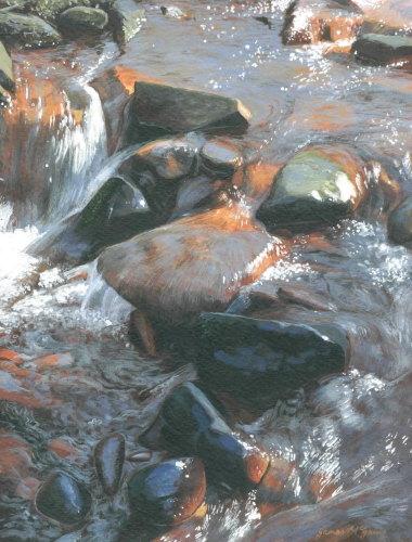 'River Esk, Westerdale #4'