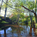 012 River Esk, Near Lealholm.  Acrylic.  2011.  360mmx250mm