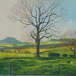No.12. Roseberry Topping From Dikes Lane. Acrylic. 2012. 500x220mm