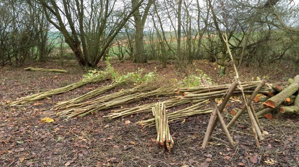 Coppice Products