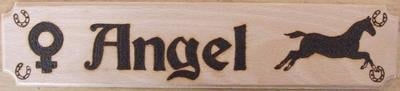 Wooden Horse Name Plates (with gender and picture3)
