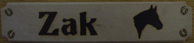 20110042 ZaK Pic 1