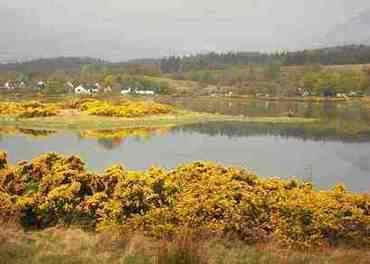 Lochdon 5 By John McNeice