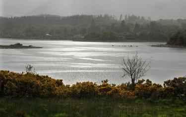 Lochdon rain