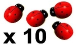Wooden Ladybirds x 10.