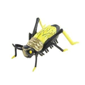 Battling Bug - Zeridec.