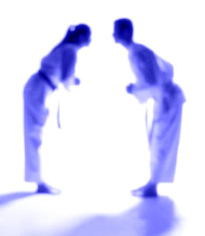 karate bow