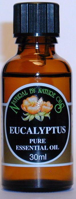 Eucalyptus - Essential Oil 30ml