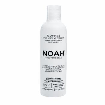 Shampoo for weak hair with Peppermint - Noah