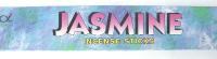 Jasmine Incense Sticks  (20 grams) in a box