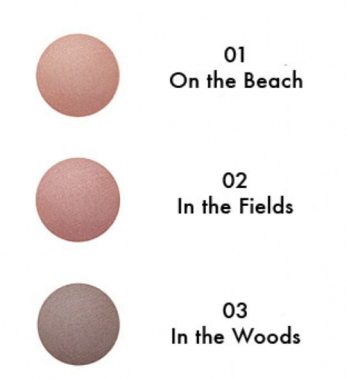 studio 78 blusher shades