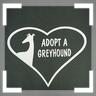 adopt 2