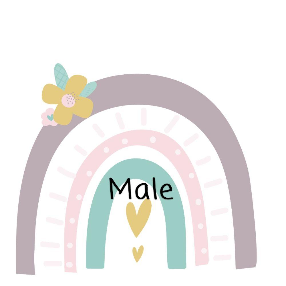Birthday Male