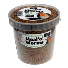 Dried Meal Worms 1000ml