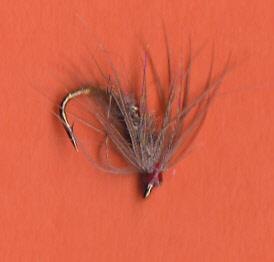 GRHE SPIDER 15