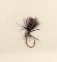 MARCH CDC TENKARA