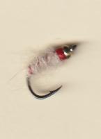 2018 salt gb white larva