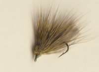 2018 OLIVE CDC CADDIS